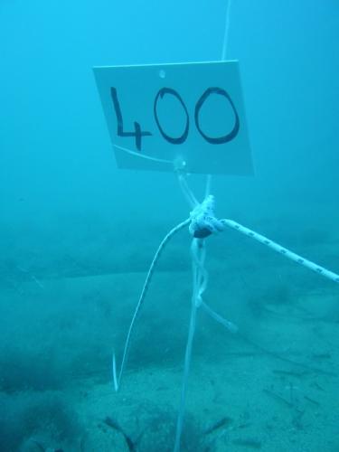 Rilievi subacquei boa.JPG