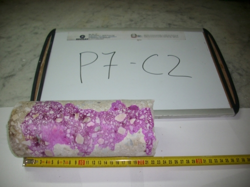 p7_c2.JPG